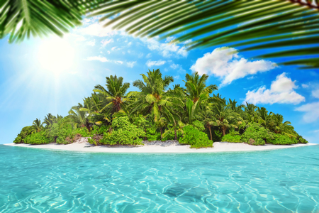 île tropicale entier au sein de l'atoll de l'océan tropical sur un jour d'été. isle subtropical inhabité et sauvage avec des palmiers. partie équatoriale de l'océan, station balnéaire tropicale de l'île.