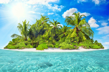 uninhabited: Whole tropical island within atoll in tropical Ocean on a summer day. Uninhabited and wild subtropical isle with palm trees. Equatorial part of the ocean, tropical island resort.