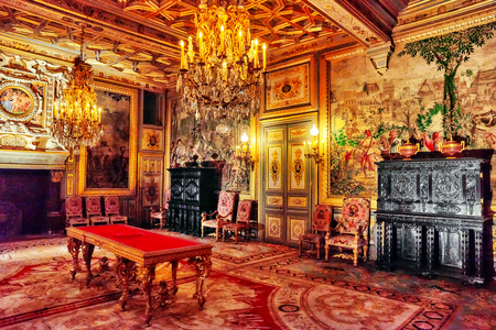 napoleon i: FONTAINEBLEAU, FRANCE - JULY 09, 2016 : Fontainebleau Palace interiors. The Francois I Salon. Chateau was one of the main palaces of French kings. Editorial