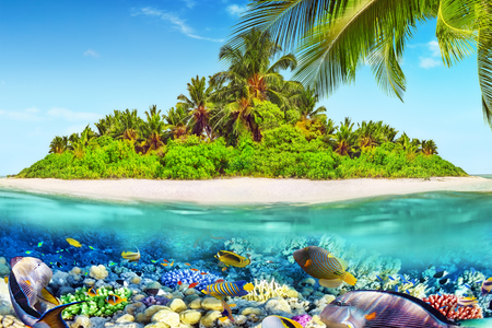 Tropical island within atoll in tropical Ocean and wonderful and beautiful underwater world with corals and tropical fish.