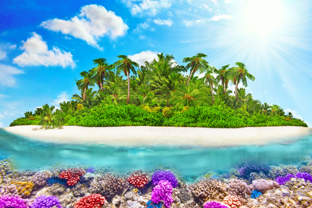 atoll: Tropical island within atoll in tropical Ocean and wonderful and beautiful underwater world with corals and tropical fish.