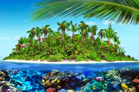 subtropical: Tropical island within atoll in tropical Ocean and wonderful and beautiful underwater world with corals and tropical fish.