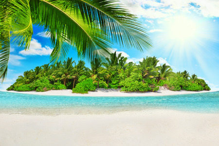 subtropical: Whole tropical island within atoll in Indian Ocean. Uninhabited and wild subtropical isle with palm trees. Blank  sand on a tropical island. Stock Photo