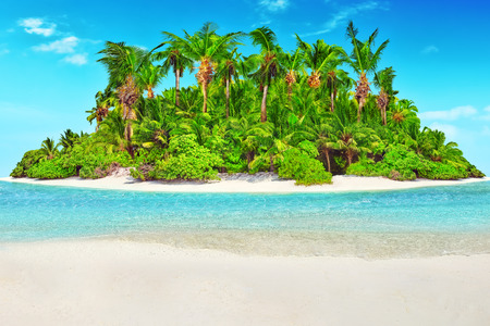 Whole tropical island within atoll in Indian Ocean. Uninhabited and wild subtropical isle with palm trees. Blank  sand on a tropical island. Stock Photo
