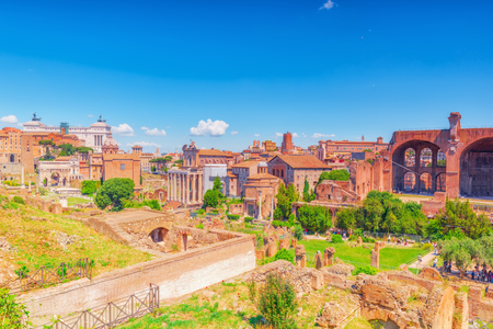 rostrum: Archaeological and historical objects in Rome, united by the name - Roman Forum and Palatine Hill.
