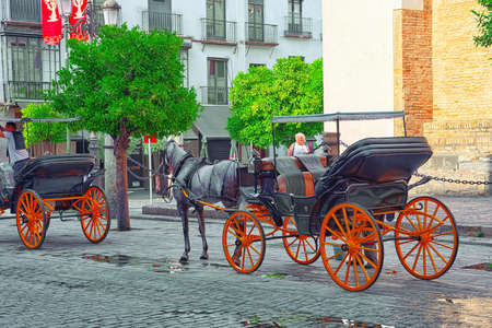 Seville, Spain - June 09,2017 : Promenade and a horse in front of vathedral of Saint Mary of the See , better known as Seville Cathedral, is a Roman Catholic cathedral in Seville. Editorial