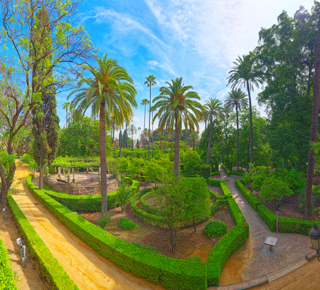 Seville, Spain - June 09, 2017 : Panoramic view of big and beautiful garden - Gardens of Royal Alcazar in Seville. Spain.