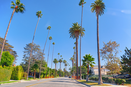 Urban views of the Beverly Hills area and residential buildings on the Hollywood hills. California. USA. Stock fotó
