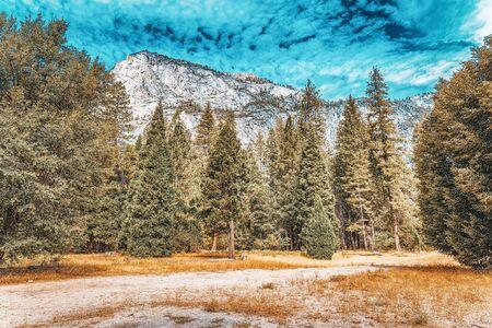 Yosemite Valley. Magnificent national American natural park - Yosemite. California. USA. Stock Photo