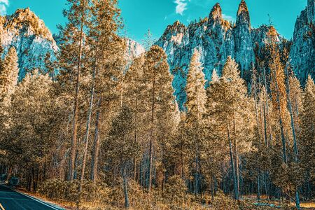 Yosemite Valley. Magnificent national American natural park - Yosemite. California. USA.