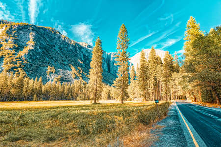Yosemite Valley. Magnificent national American natural park - Yosemite. California. USA.