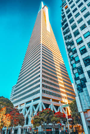 San Francisco, California, USA - September 08, 2018: View of the city center,tower skyscraper TransAmerica Pyramid, downtown of San Francisco.