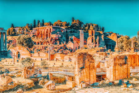 Archaeological and historical objects in Rome, united by the name - Roman Forum. View on Palatine Hill.