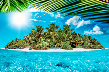 Whole tropical island within atoll in tropical Ocean on a summer day. Uninhabited and wild subtropical isle with palm trees. Equatorial part of the ocean, tropical island resort. Stock Photo