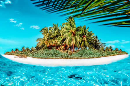 Whole tropical island within atoll in tropical Ocean. Uninhabited and wild subtropical isle with palm trees. Equatorial part of the ocean, tropical island resort.