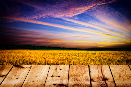 yellow field under blue sky. Wood floor photo