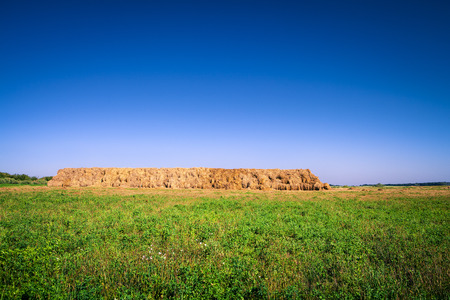 hayroll: hay-roll on meadow. nature background Stock Photo