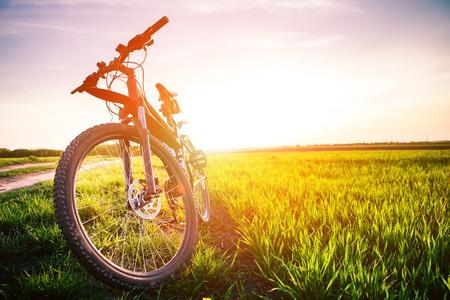 bicicleta: Ciclismo de montaña cuesta abajo descendiendo rápidamente en la bicicleta. Vista desde ojos de los ciclistas. Foto de archivo