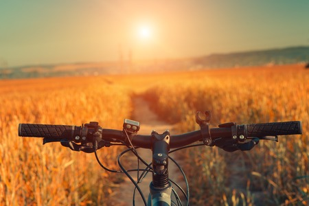 Mountainbike bergab absteigend schnell mit dem Fahrrad. Ansicht von Bikern Augen. Standard-Bild