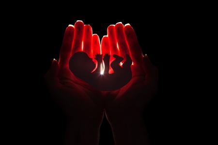 Embryo Silhouette Frau in der Hand