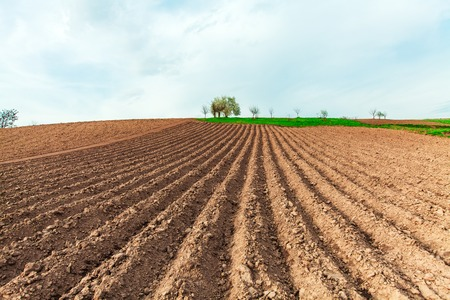ploughed field: plowed field and cloudy sky in sunset Stock Photo