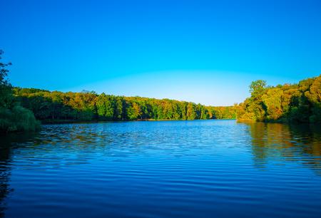 illuminative: Picturesque forest and sun illuminative the small river