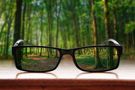 Clear forest in glasses on the background of blurred forest Banque d'images - 135492206