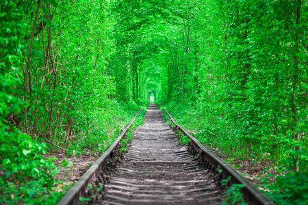un ferrocarril en el bosque de primavera túnel del amor Foto de archivo