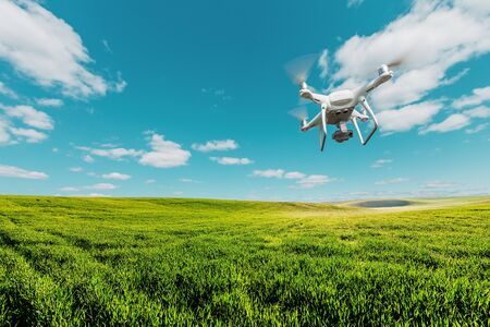 drone quad copter on green corn field Banque d'images - 137370638