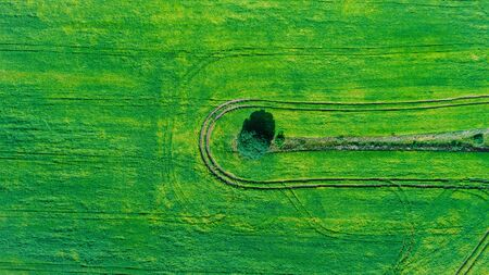 drone with a camera on a green field.