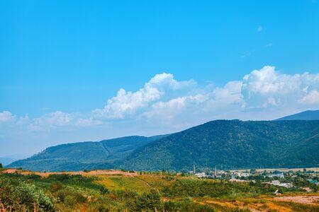 Mountain landscape, Pine tree forest Banque d'images
