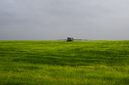 Field treatment with herbicides. Tractor with sprayer is on the green field.