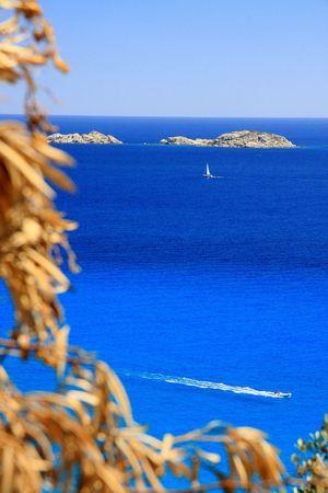 foglie: Navigation across the blue - Sardinia - Italy