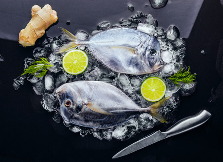 two on top: Two Fresh fish (Vomer or Selene setapinnis ) dill,knife, ginger , two lime on melted ice.Flat lay. Top view.