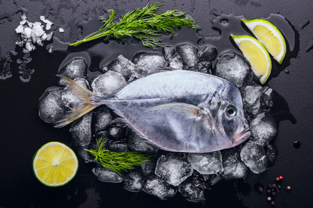 natue: Fresh fish (Vomer or Selene setapinnis ) dill, lime and lemon melted ice.Flat lay. Top view.