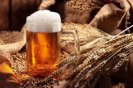Mug of beer in malt.Pale malt, crystal malt. Still life. Copy space 免版税图像