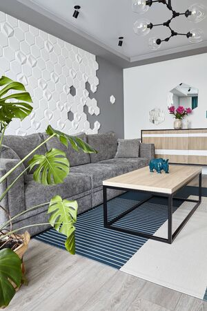 Modern Living Room .Grey sofa and cyan blanket,carpet and .Decorative honeycomb on the wall.Coffe table. Design interior. Grey,white cyan colors