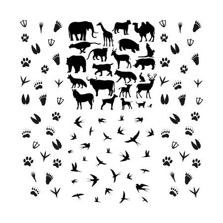 conjunto de vector de diseño de logotipo de animales y huellas