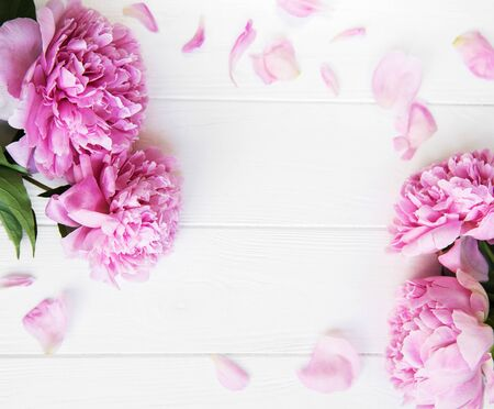 beautiful pink peony flowers on a white wooden background