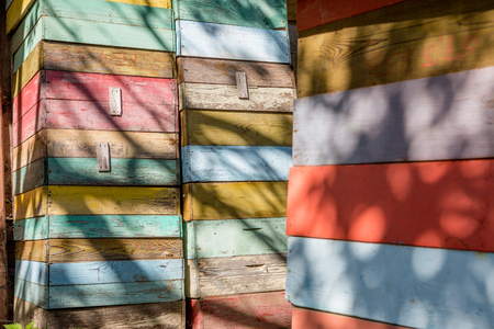 colorful beehives in the lush garden