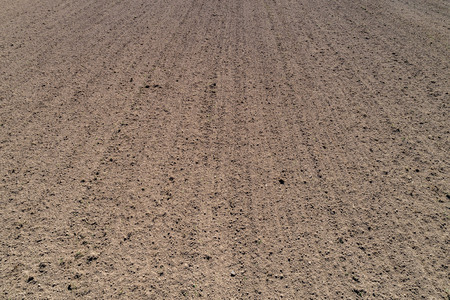 clean plowed land in the spring, the bright sun