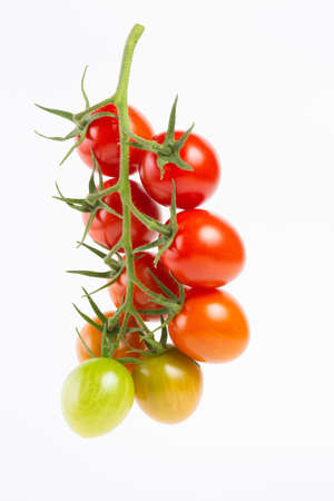 red cherry tomatoes on a branch on a white background.