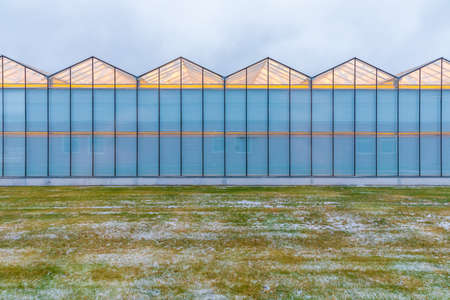 large industrial greenhouse with the lighting, the view from the outside. Autumn