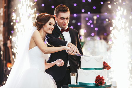 Happy bride and groom cut the wedding cake in the front of fireworks
