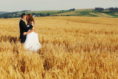 A wedding couple hugs somewhere on the golden field