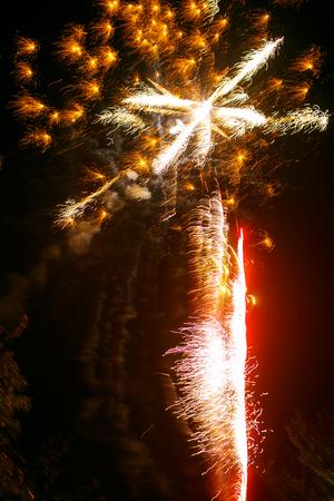 Fireworks shine in the night sky