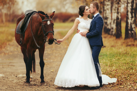 Groom kisses a bride while she holds a harness on the horse Stock Photo