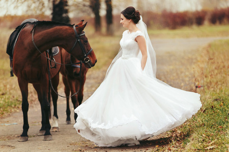 Bride whirls standing behind the brown horses Stock Photo