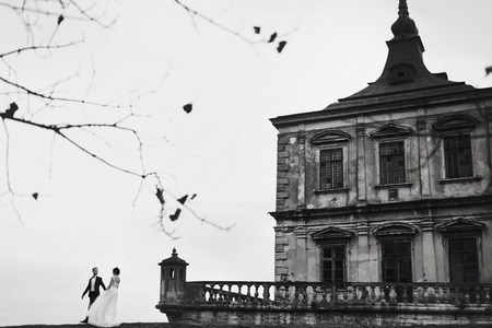 fiance: A black and white picture of a couple standing behind an old castle