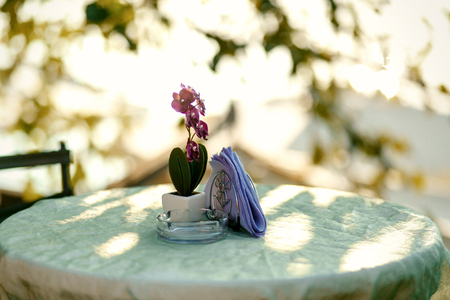 romantic places: Violet orchid in little white flowerpot stands on the round table Stock Photo